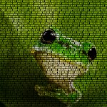 Frog as Text-Image.